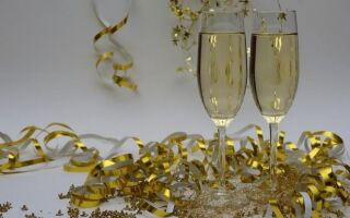 Главная Новогодняя ночь для взрослых с детьми. Как оживить его?