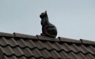 Украшения на крыше — способ создания оригинальной крыши