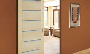 Раздвижные двери — альтернатива традиционным дверям