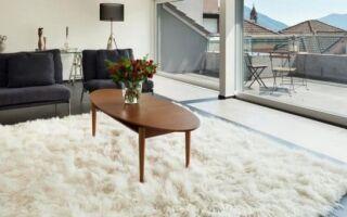 Ковер в квартиру — как его купить, хватит на долгие годы (ФОТО)
