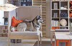 Праздники с ИКЕА — новая мебель и аксессуары уже в ассортименте магазина (ФОТО)