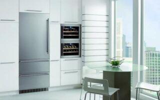 Встроенный холодильник — какую модель выбрать. Преимущества, преимущества и цены встроенных холодильников