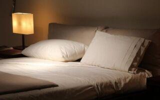 Подушки с перьями, чешуей или латексом? Какие подушки выбрать