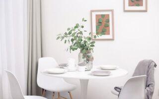 Расположение столовой в мини-и макси-версиях (ФОТО)