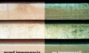 Пропитка древесины — обзор