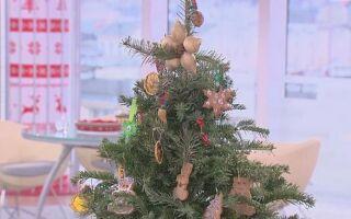 Как сделать рождественские украшения из того, что у нас дома (ВИДЕО)