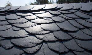 Каменный шифер — дикий покров