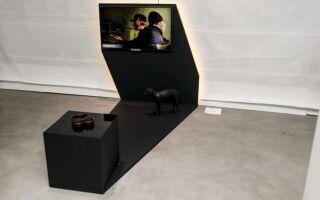 Необычная мебель для телевизора