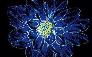 Керамическая плитка с флуоресцентным цветочным узором