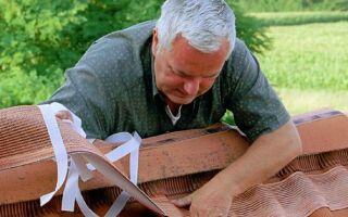 Вредители на крыше — как предотвратить повреждение крыши