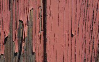 Реконструкция древесины после наводнения