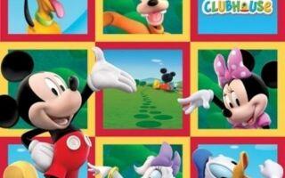 Рисунок 6: Ковер Mickey Mouse Club