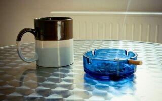 Уродливый запах сигарет и животных в доме — как избавиться от него