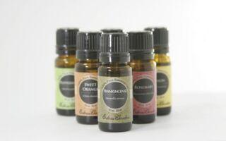 Эфирные масла — которые ароматизаторы выбирают для здоровья и благополучия