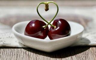 Сладкие вишни — зачем их есть. Посмотрите, какие специальности вы можете с ними сделать