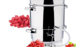 Sokownik — как сделать фруктовые консервы